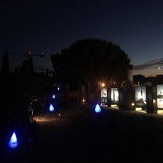 Festival-NM2021-42